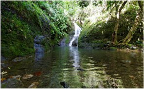 Wigmores Waterfall